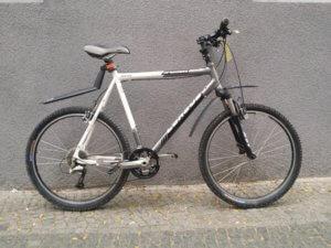 Mountain Bike in Top Zustand, gebraucht