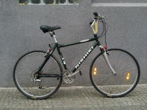 Nishiki Crossrad